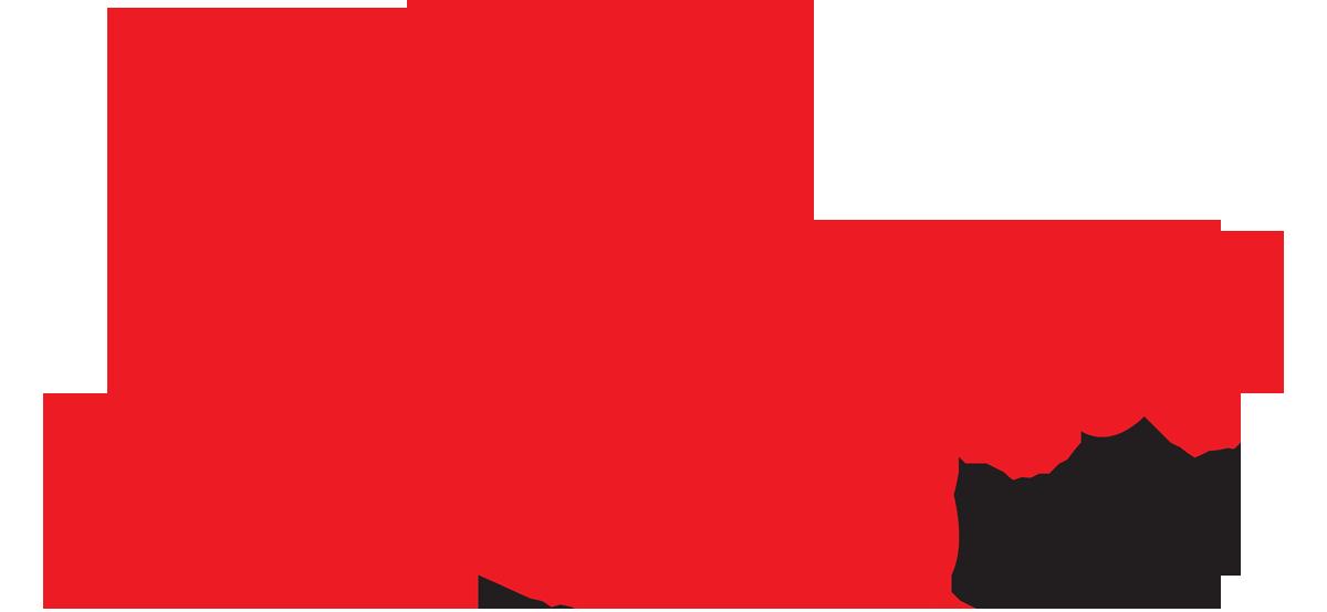 Schneps Broadcasting